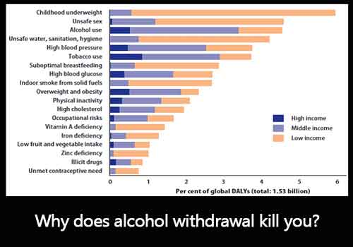 Why does alcohol withdrawal kill you