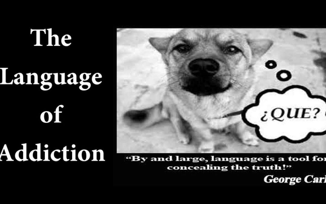 The Language of Addiction