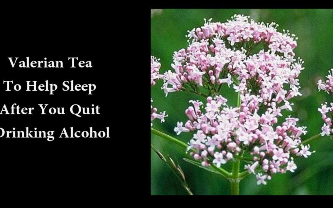 Valerian Tea To Help Sleep After You Quit Drinking Alcohol
