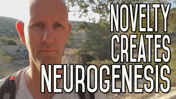 After You Give Up Alcohol – Novelty Creates Neurogenesis