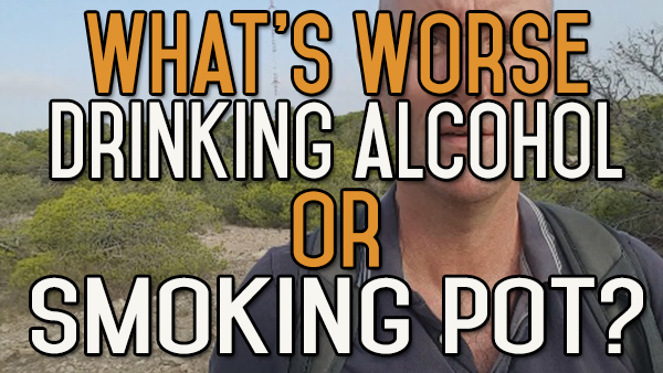 What's Worse: Drinking Alcohol or Smoking Pot?