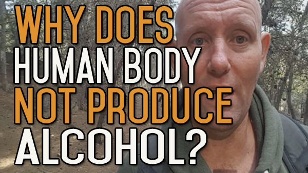 Why Hasn't The Human Body Evolved To Produce Alcohol Internally?
