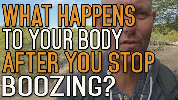 What Really Happens To Your Body When You Stop Drinking Alcohol?