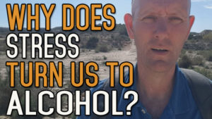 Why Does Stress Make Us Turn to Alcohol?