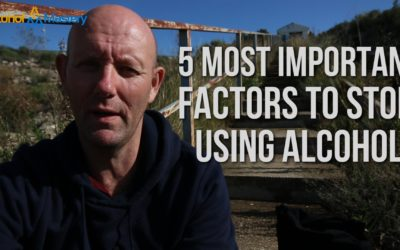 The 5 Most Important Factors in Stopping Drinking Alcohol
