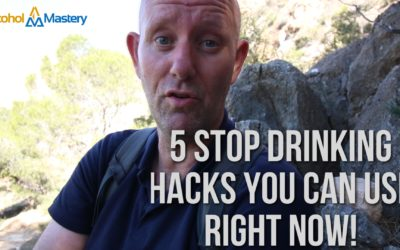 5 Of The Best Quit Drinking Hacks You'll Find Today