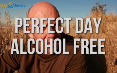What's My Perfect Day Alcohol Freed?