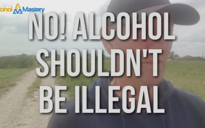 No! Alcohol Should Not Be Illegal And Why You Should Not Want It To Be