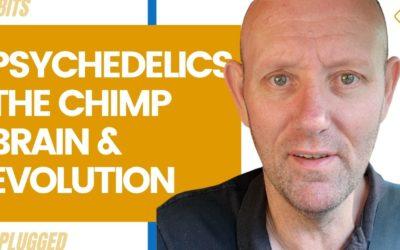 Psychedelics, The Chimp Brain, & Evolution