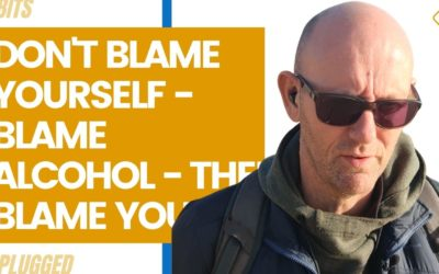 Don't Blame Yourself – Blame Alcohol – Then Blame Yourself